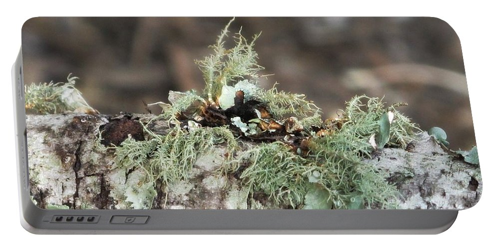 Moss Portable Battery Charger featuring the photograph Misty Moss by Michele Nelson