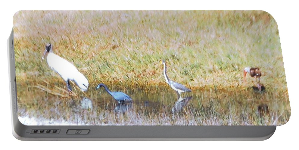 North Ft.myers Portable Battery Charger featuring the photograph Mixed Shore Birds by Robert Floyd