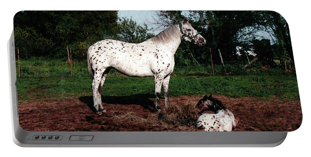 Appaloosa Portable Battery Charger featuring the painting Mom Watches Over by Shere Crossman