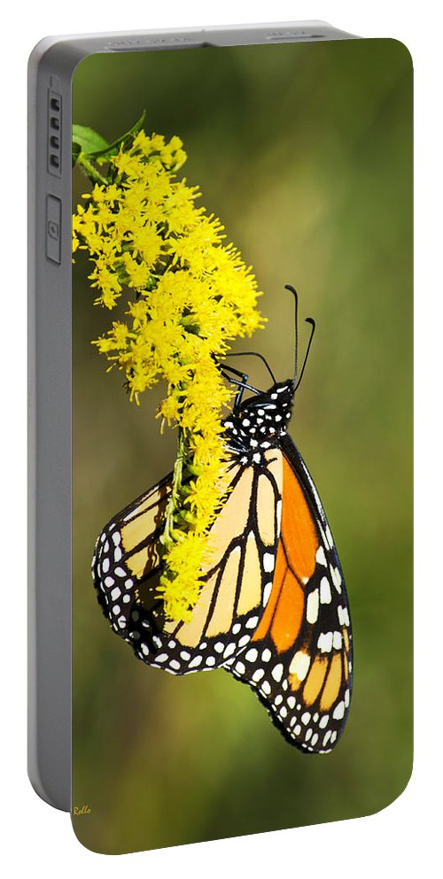 Monarch Butterfly Portable Battery Charger featuring the photograph Monarch Butterfly On Goldenrod by Christina Rollo