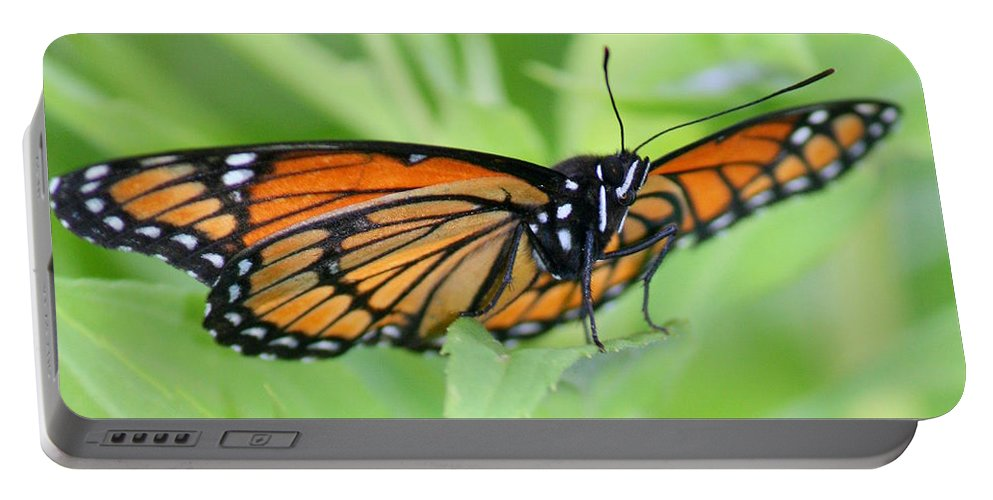Butterfly Portable Battery Charger featuring the photograph Monarch Butterfly Rocking Chair by Neal Eslinger