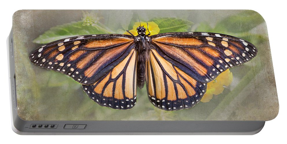 Monarch Butterfly Portable Battery Charger featuring the photograph Monarch Butterfly by TN Fairey
