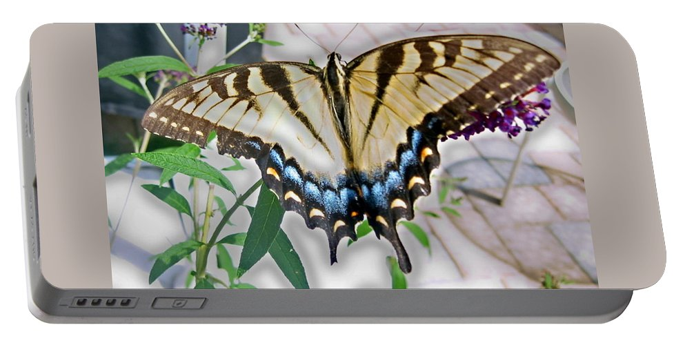 Butterfly Portable Battery Charger featuring the photograph Monarch Majesty by Judith Morris