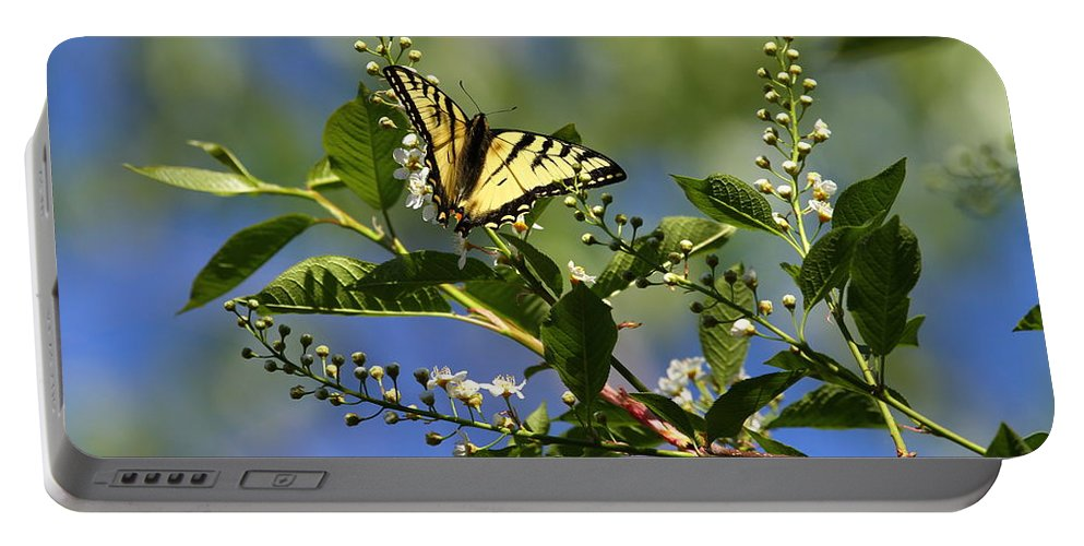 Butterfly Portable Battery Charger featuring the photograph Monarch Tranquility by Dee Carpenter