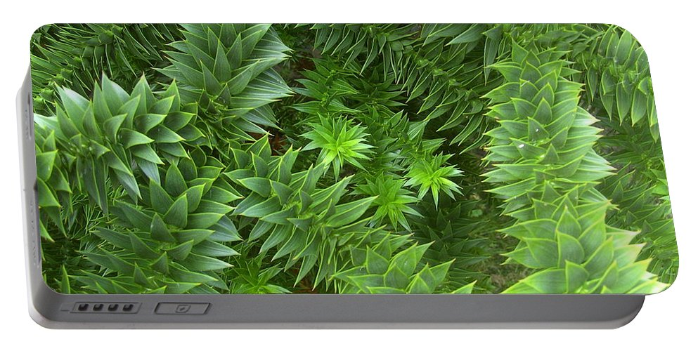 Monkey Portable Battery Charger featuring the photograph Monkey Puzzle by Steve Kearns