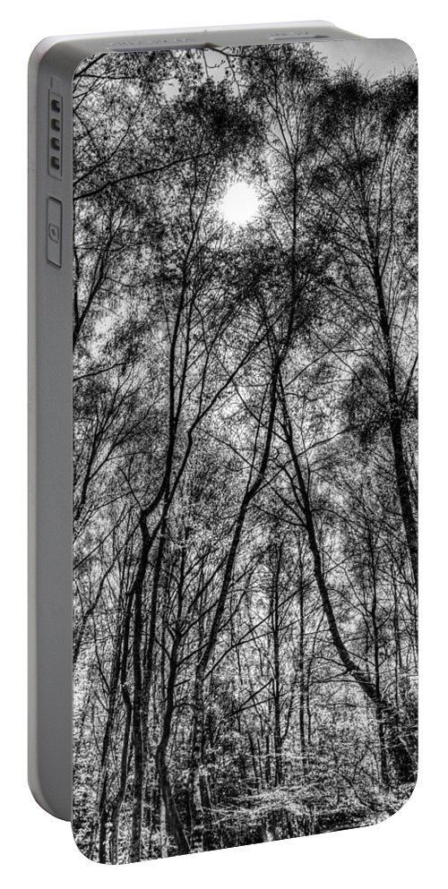 Forest Portable Battery Charger featuring the photograph Monochrome Forest by David Pyatt
