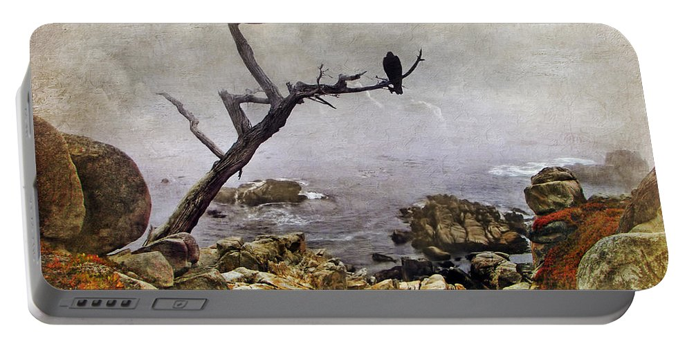 Birds Portable Battery Charger featuring the photograph Monterey Mist by Nikolyn McDonald