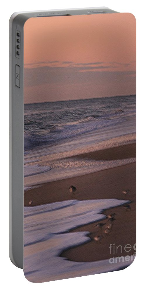 Beach Portable Battery Charger featuring the photograph Morning Birds At The Beach by Nadine Rippelmeyer