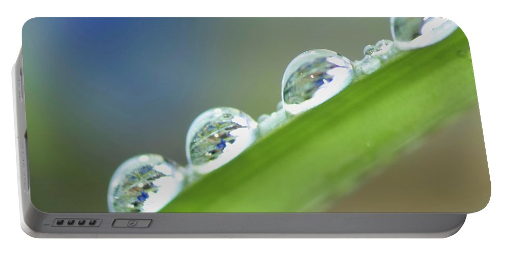 Drop Portable Battery Charger featuring the photograph Morning Dew Drops by Heiko Koehrer-Wagner