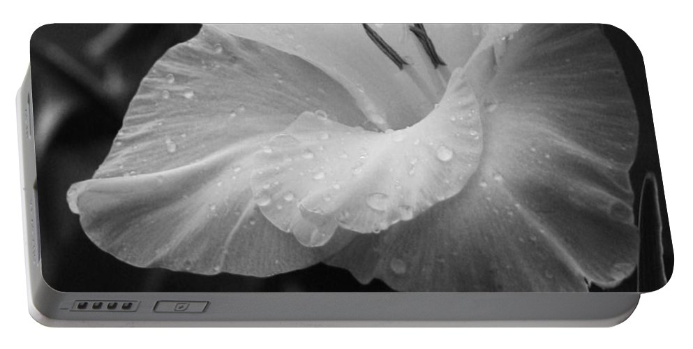 Black And White Flower Portable Battery Charger featuring the photograph Morning Dew by Marianne Jimenez