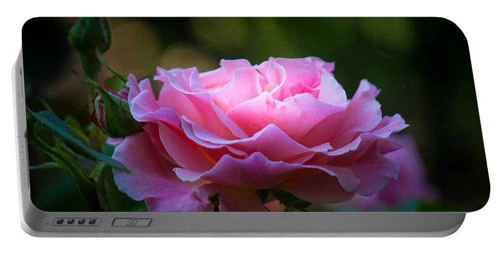Pink Portable Battery Charger featuring the photograph Morning Light by Patricia Babbitt