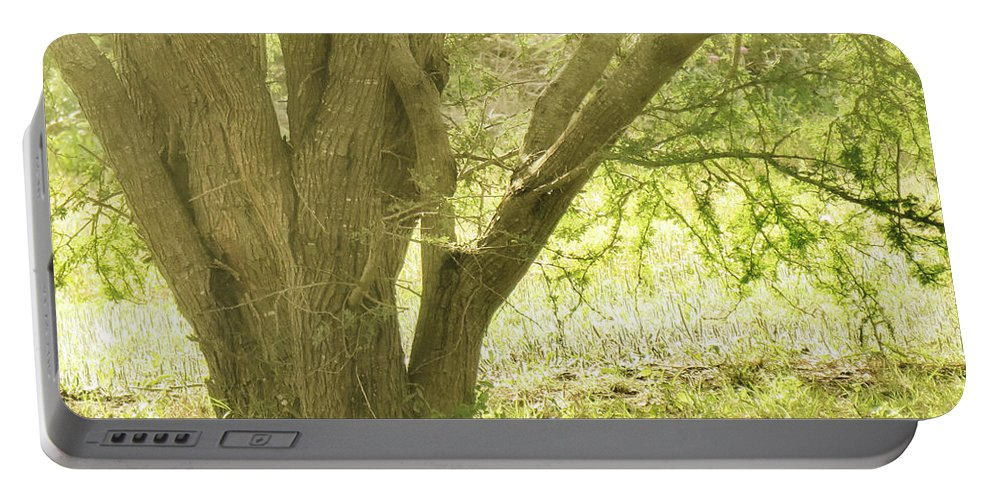 Morning Portable Battery Charger featuring the photograph Morning Tree by Gary Richards
