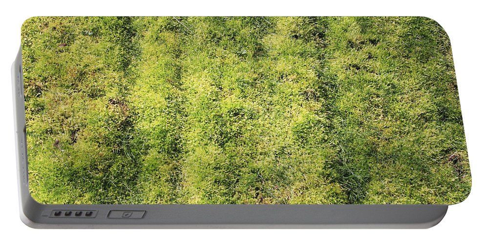Moss Portable Battery Charger featuring the photograph Mossy Grass by Lee Serenethos