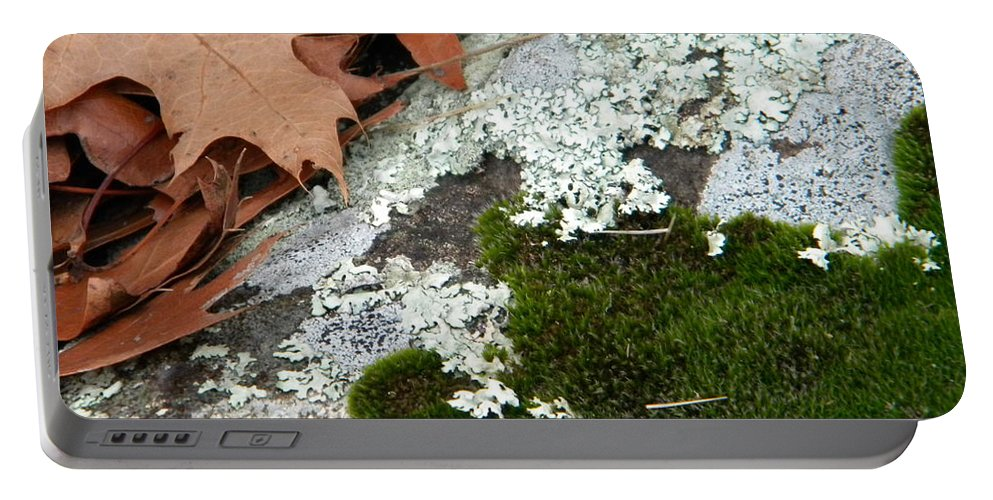 Moss Portable Battery Charger featuring the photograph Mossy Leaves by Nathanael Smith
