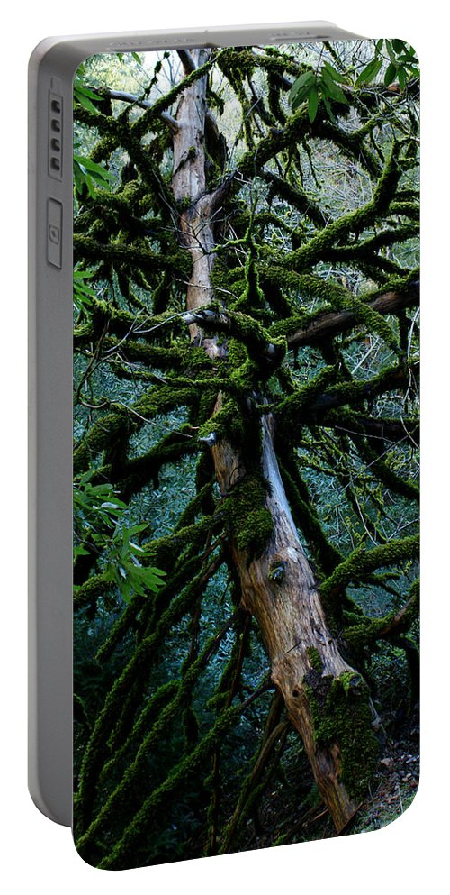 Mossy Tree Portable Battery Charger featuring the photograph Mossy Tree by Ernie Echols