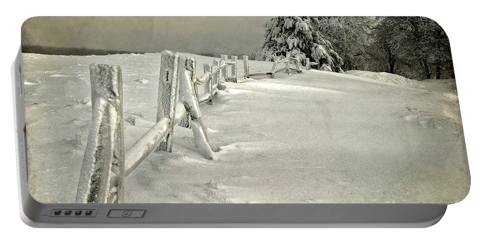 Snow Portable Battery Charger featuring the photograph Mother Nature's Christmas Tree by Lois Bryan