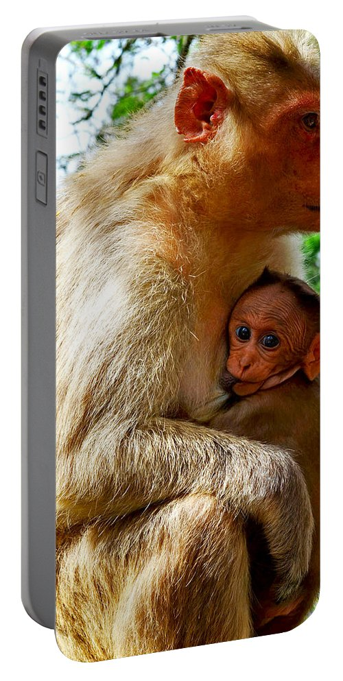 Animals Portable Battery Charger featuring the photograph Mother by Shoot AtSight