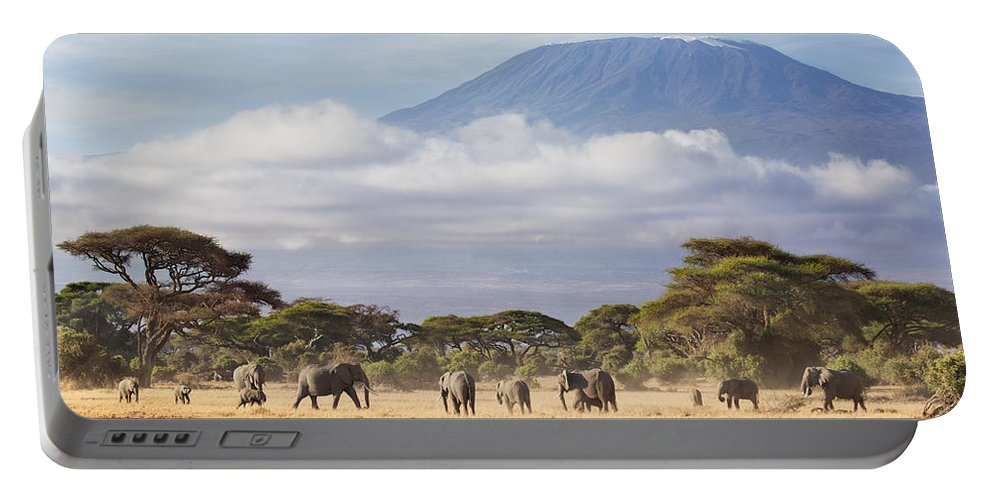 Nis Portable Battery Charger featuring the photograph Mount Kilimanjaro Amboseli by Richard Garvey-Williams