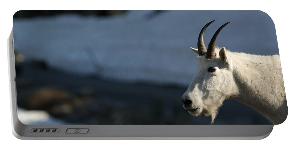 Road Trip Portable Battery Charger featuring the photograph Mountain Goat Glacier National Park by Brian Kamprath
