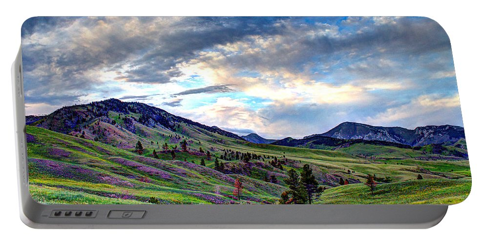 Landscape Portable Battery Charger featuring the photograph Mountain Meadow by John Lee