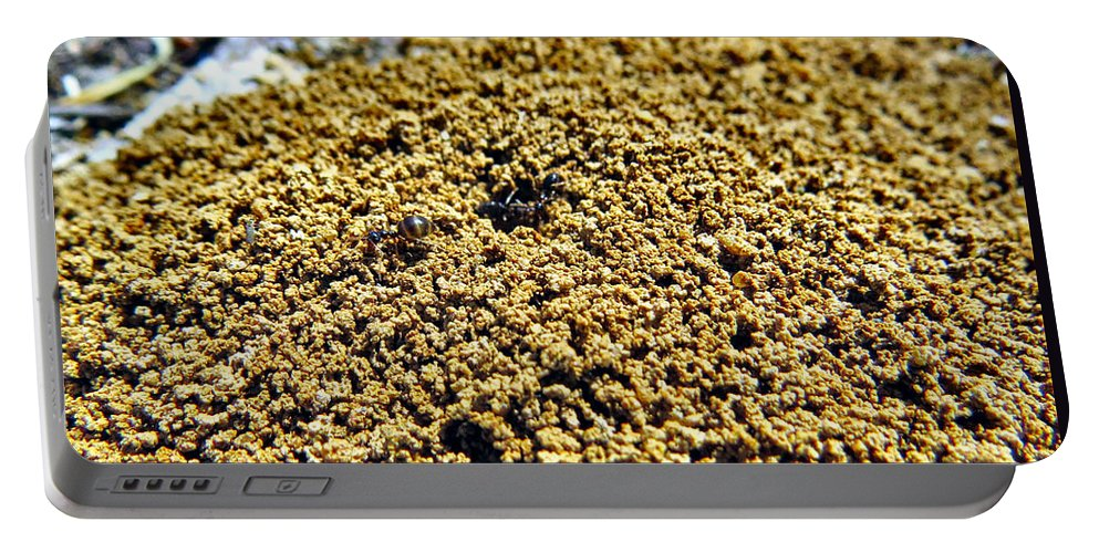 Ant Portable Battery Charger featuring the photograph Mountain Out Of An Anthill by Art Dingo
