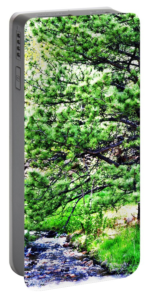 Landscape Portable Battery Charger featuring the photograph Mountain Stream by Pam Romjue