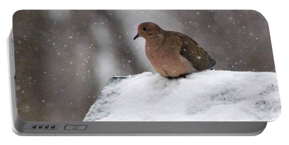 Mourning Dove Portable Battery Charger featuring the photograph Mourning Dove In Snow by Karen Adams