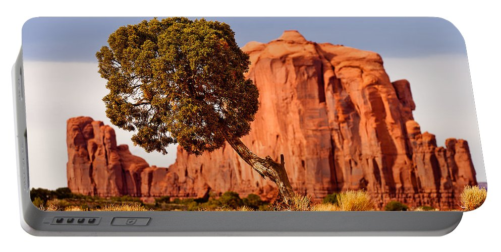 Monument Valley Portable Battery Charger featuring the photograph Move Out Of The Way Tree by Peter Tellone