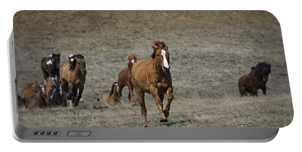 Horse Portable Battery Charger featuring the photograph Moving On Out by Wildlife Fine Art