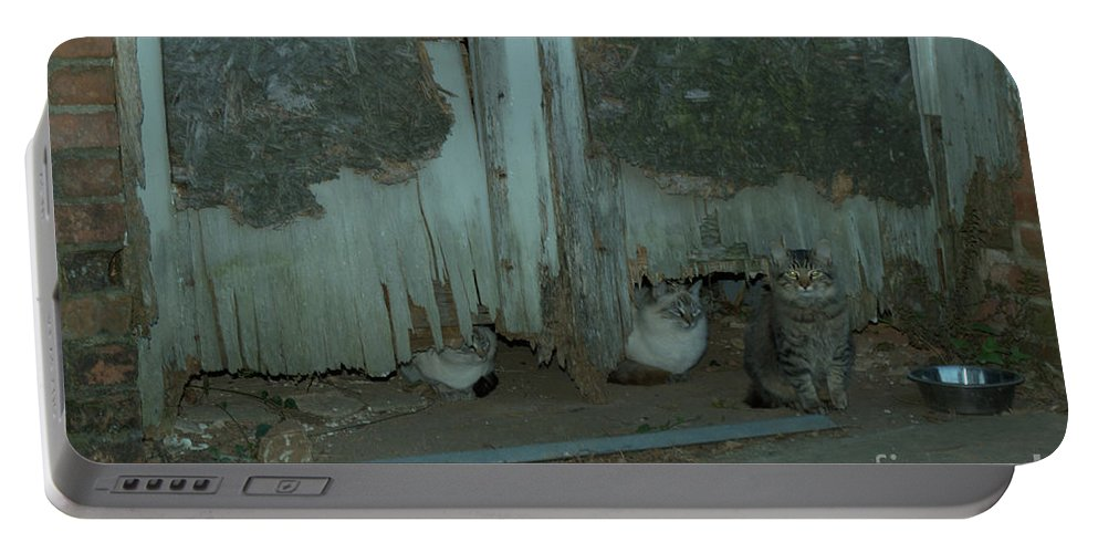 Felines Portable Battery Charger featuring the photograph Mr. Jones Rescuies by Donna Brown