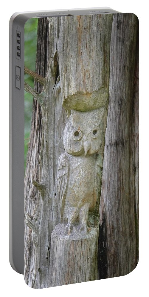 Mr Tingle's Owl Portable Battery Charger featuring the photograph Mr Tingle's Owl by Maria Urso