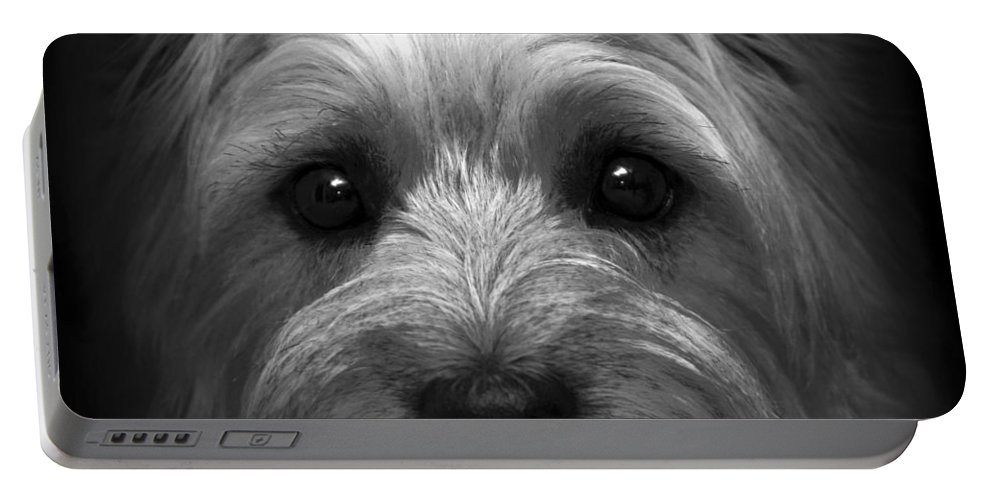 Dog Portable Battery Charger featuring the photograph Mr. Watson by Tom Bell