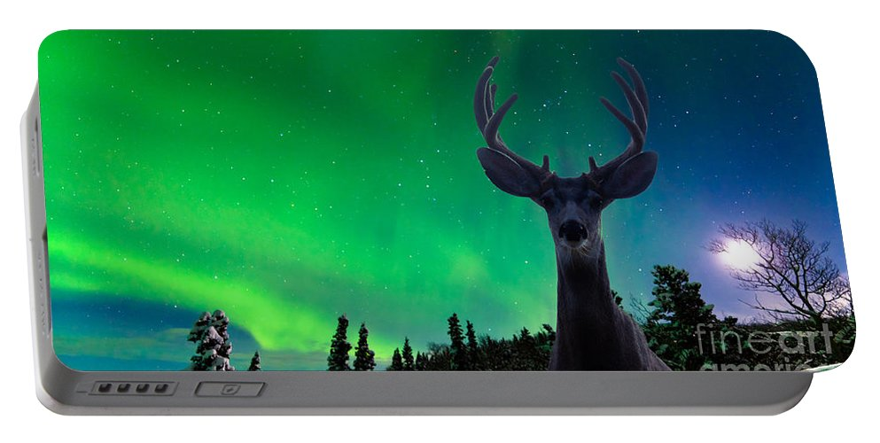 Animal Portable Battery Charger featuring the photograph Mule Deer And Aurora Borealis Over Taiga Forest by Stephan Pietzko