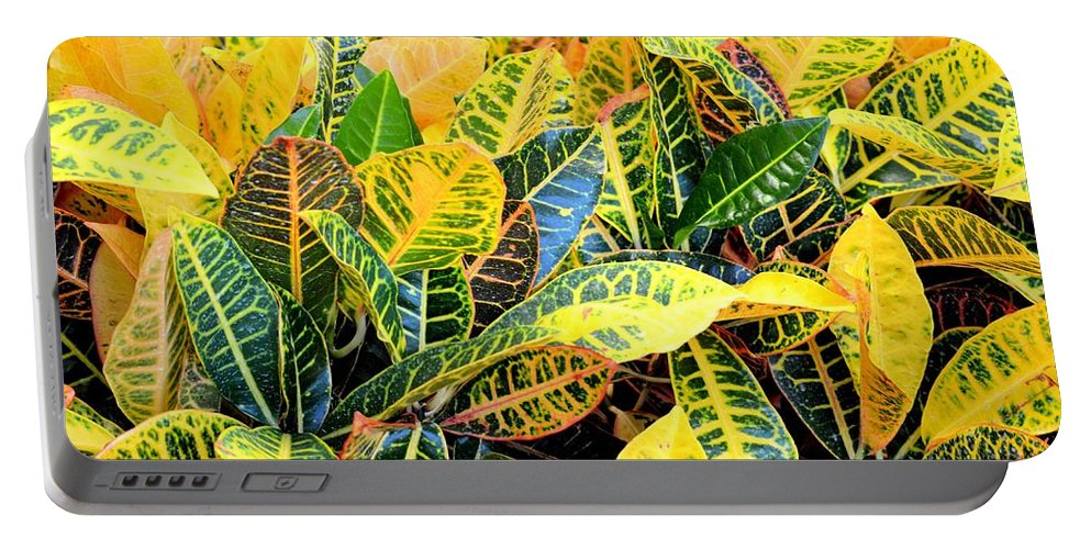 Multi-colored Portable Battery Charger featuring the photograph Multi-colored Croton by Maria Urso