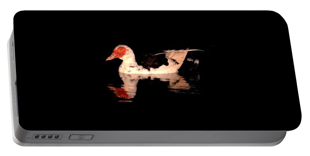 Muscovy Night Reflections Portable Battery Charger featuring the photograph Muscovy Night Reflections by Maria Urso