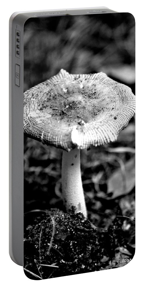 Mushroom Portable Battery Charger featuring the photograph Mushroom In Black And White by Tara Potts