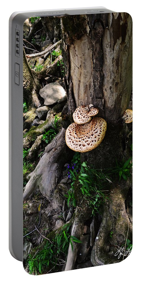 Lisa Lambert Portable Battery Charger featuring the photograph Mushrooms And Flowers by Lj Lambert