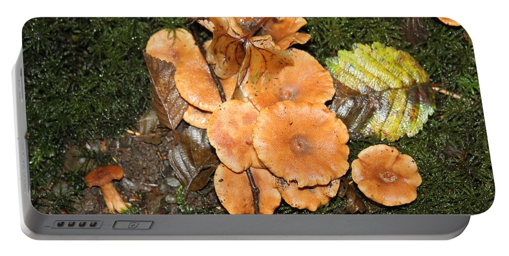 Portable Battery Charger featuring the photograph Mushrooms by Tom Janca