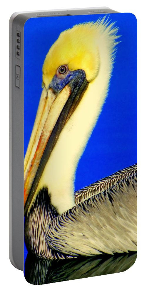 Pelicans Portable Battery Charger featuring the photograph My Friend Pelli by Karen Wiles