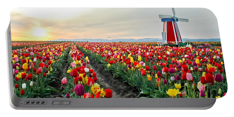 Tulips Portable Battery Charger featuring the photograph My Touch Of Holland 2 by Nick Boren