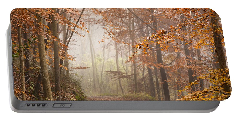 Atmospheric Portable Battery Charger featuring the photograph Mystic Woods by Anne Gilbert