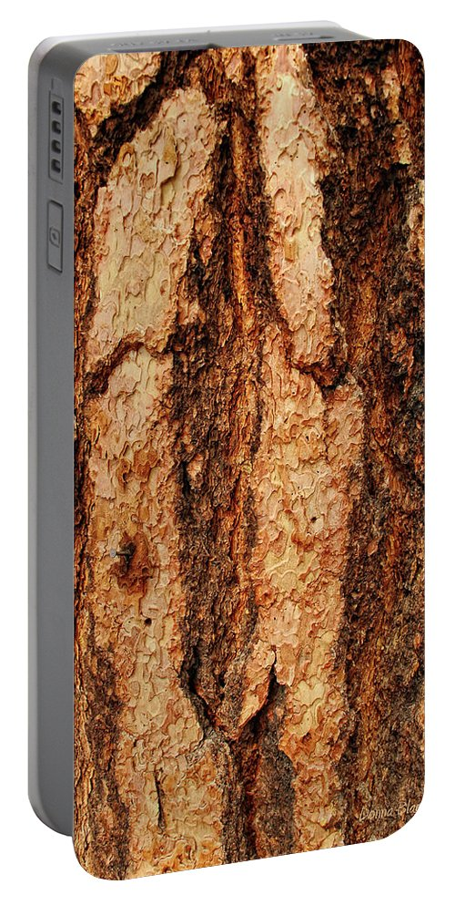 Tree Portable Battery Charger featuring the photograph Nailed by Donna Blackhall