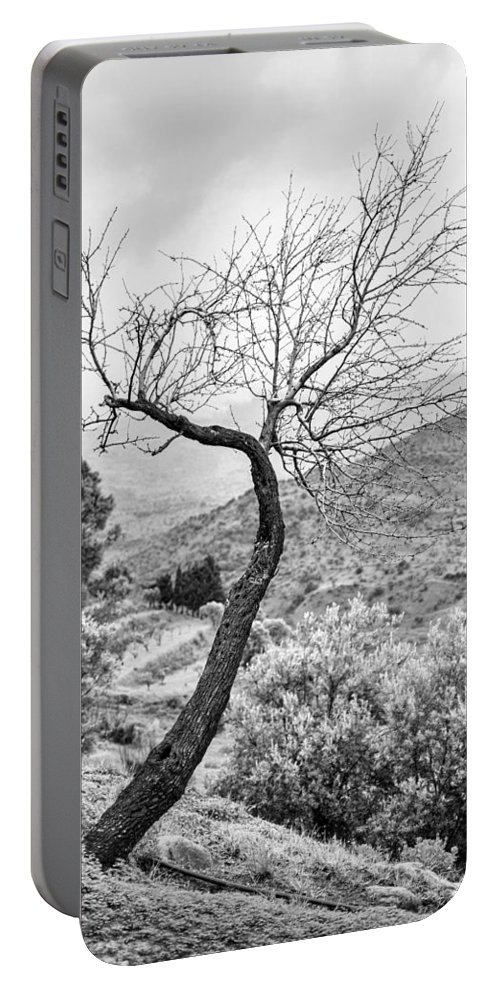 Tree Portable Battery Charger featuring the photograph Naked by Alfio Finocchiaro