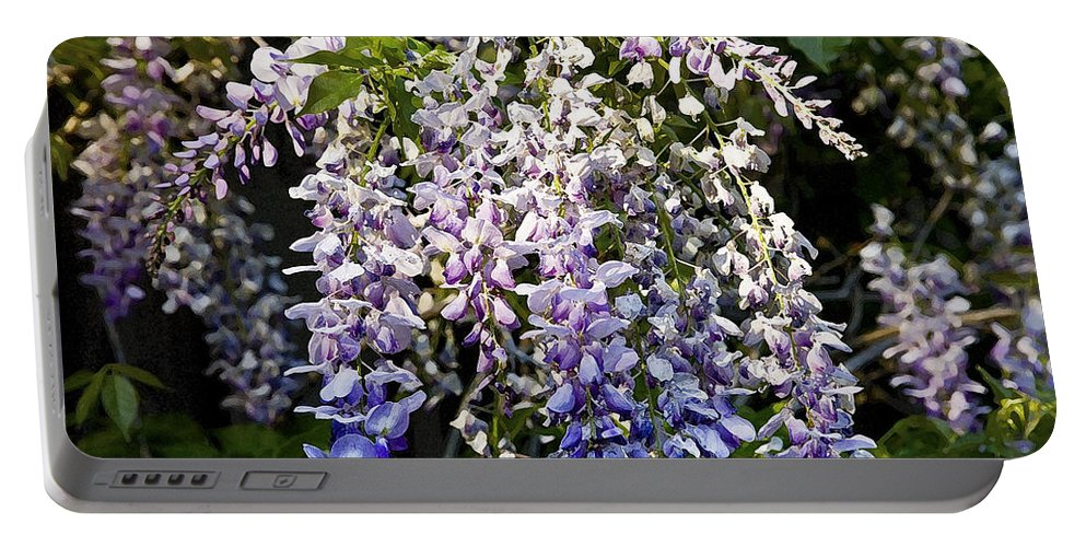 Wisteria Portable Battery Charger featuring the photograph Nancys Wisteria 3 Db by Rich Franco