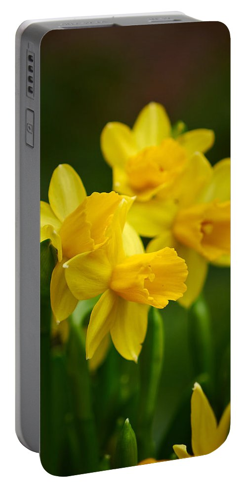 Lehto Portable Battery Charger featuring the photograph Narcissus by Jouko Lehto