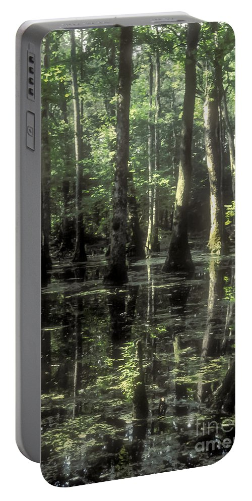 Natchez Trace Parkway Parkways Wetlands Tree Trees Water Reflection Reflections Nature Mississippi Cypress Cypresses Landscape Landscapes Waterscape Waterscapes Portable Battery Charger featuring the photograph Natchez Trace Cypress by Bob Phillips