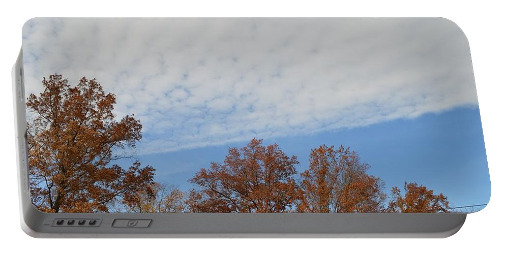 Canvasprints Portable Battery Charger featuring the photograph Nature's Brush Strokes by Sonali Gangane