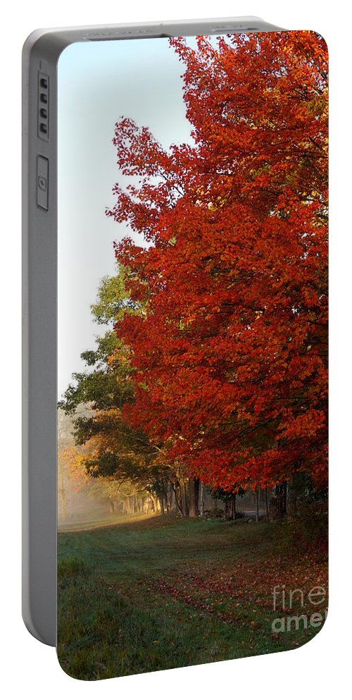 Newhampshire Portable Battery Charger featuring the photograph Nature's Red Highlights by Kerri Mortenson