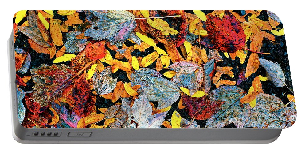 Tapestries Portable Battery Charger featuring the photograph Nature's Tapestry by Ira Shander