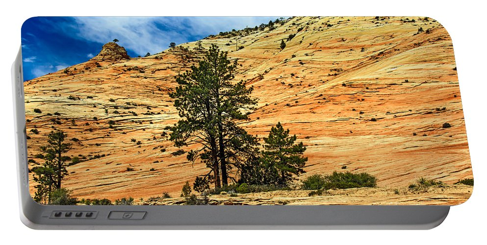 Zion National Parks Portable Battery Charger featuring the photograph Navajo Sandstone by Robert Bales